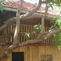 Rohini Krushi Paryatan Kendra, Karanjon, Vasai, Thane