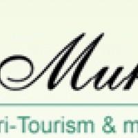 Muktt Agri Tourism, Zarwad Budruk, Trimbak, Nashik