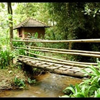 Rainforest Retreat at Mojo Plantation, eco-tourism with sustainable agriculture and environmental education