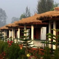 Resorts Hotels In Sundarban Best Stay Near The Jungle Forest