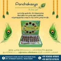 Panchagavya Diya / Samprani Cups